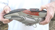 Recommended sports shoes